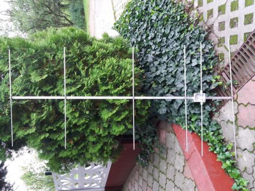 images83.fotosik.pl/1014/0b8eadc4354ff642med.jpg