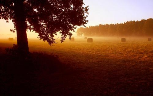Wrześniowe mgły-Dolina Noteci