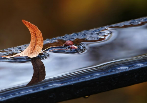 Jesienna żaglówka