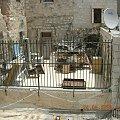Izrael życie#bóg #cerkiew #chrystus #izrael #jerozolima #jerycho #kościół #nazaret #ZiemiaŚwięta