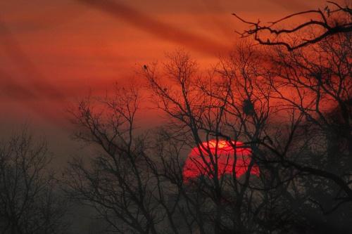 zimowe słońce u schyłku dnia