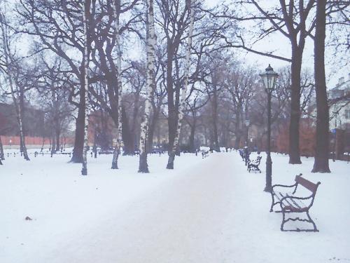 Jeszcze zima, wciąż trwa ... pozdrawiam :)