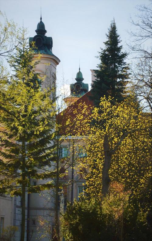 za ,,firanką'' seledynowej zieleni - w świetle kwietniowego słońca ...... wieże pałacu w Otwocku Wielkim