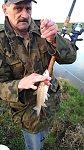 images83.fotosik.pl/592/ac2e15f42e297b78m.jpg