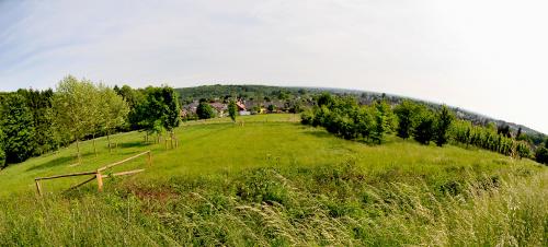 #krajobrazy #natura #NRW i #okolice