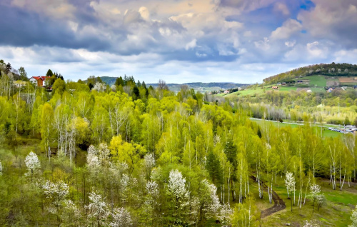 zielone wzgórza nad Soliną