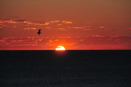 wschod slonca nad polskim morzem #polskie #morze #urlop #alicjamondritzki