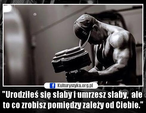 Motywatory Motywacja Do Treningu Memy Motywatory Fotosikpl