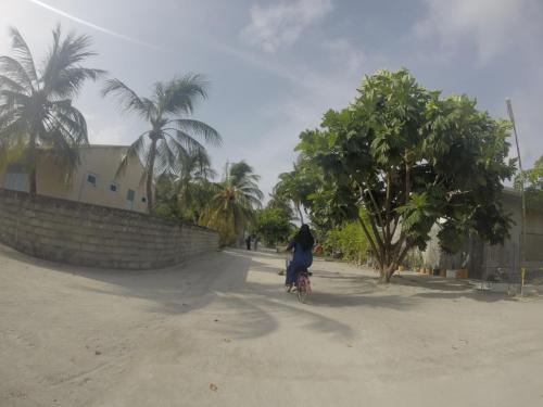 Ghana panie podłączyć podłącz się do kawiarni virginia beach