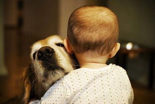 Dziecko i stary pies