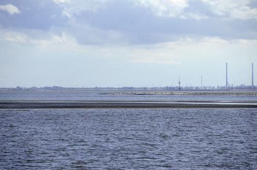 pierwszy raz w zyciu widzialam morski przyplyw i odplyw tam gdzie widac lad rano byla woda,morze a w powrotnej drodze z helgoland troszke sucho sie zrobilo:) ptaki mialy ucieche a foki mogly sie opalac jak widac /troszke/ #morze #polnocne #wyspa