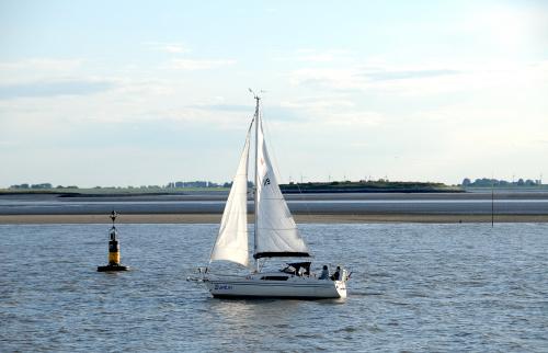 odplyw morski w powrotnej drodze z Helgoland ,foki opalaly sie na ladzie a ptaki mialy wyzerke:)) #Morze #Pólnocne i #iego #odplyw #alicjaszrednicka