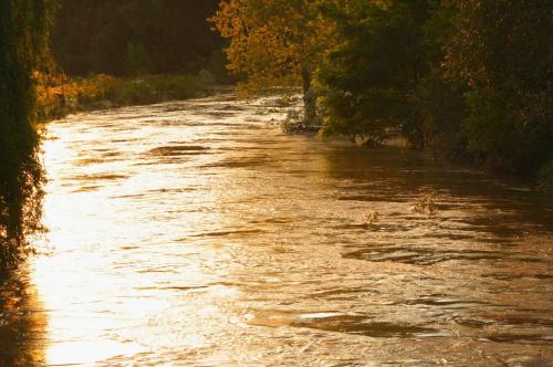 stan alarmowy rzeki Wąskiej