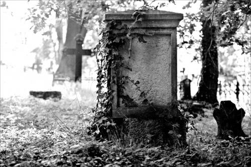 Cmentarz w Brodach (woj. lubuskie)