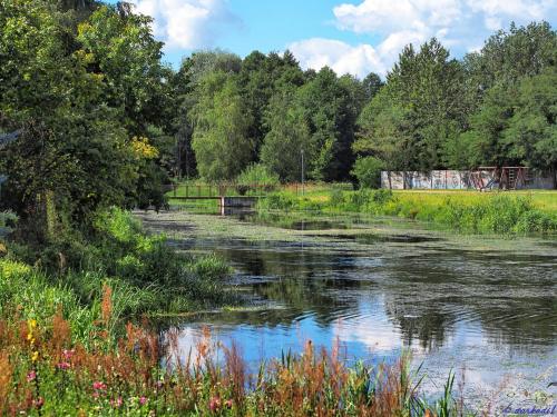 Kładka nad rzeką Zagożdzonka w Kozienicach