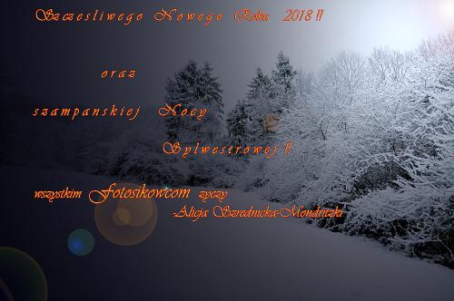 Zyczenia Noworoczne . Do Siego! #zyczenia #noworoczne #zima