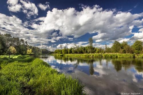 Lato nad rzeką...