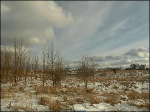 Łąka zimą...